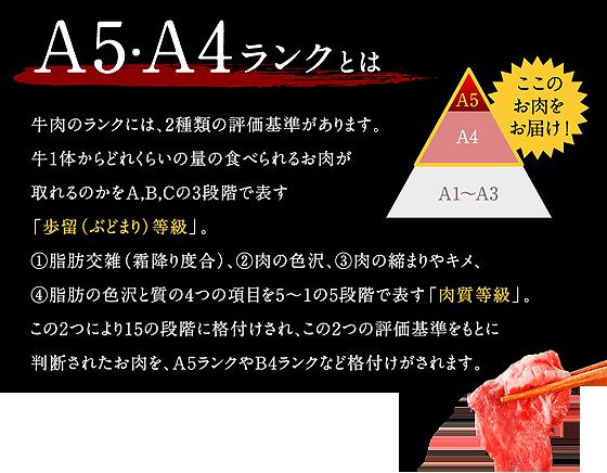 A5A4ランク.png