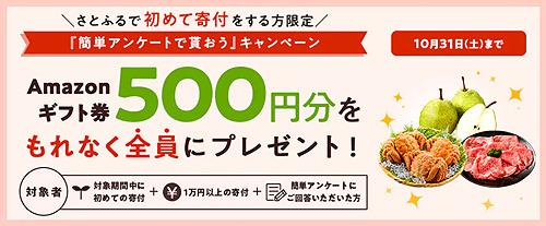 さとふるキャンペーン_2010.jpg